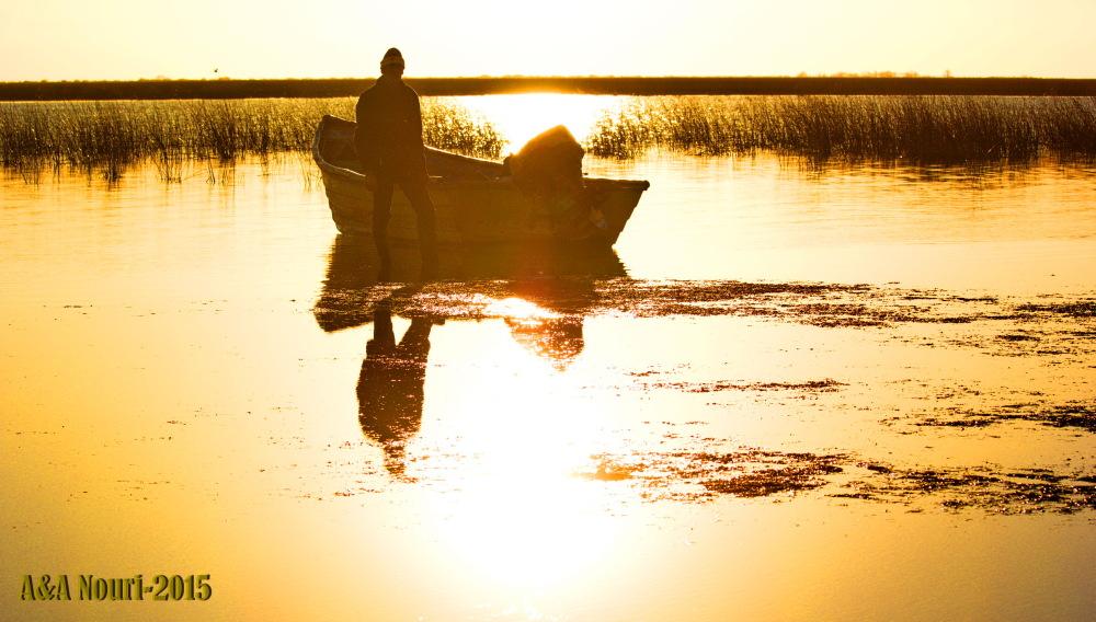 memories of wetland...