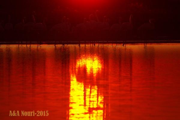 sun kiss on angels reflection