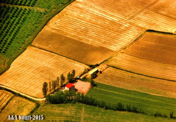 high view of a farm