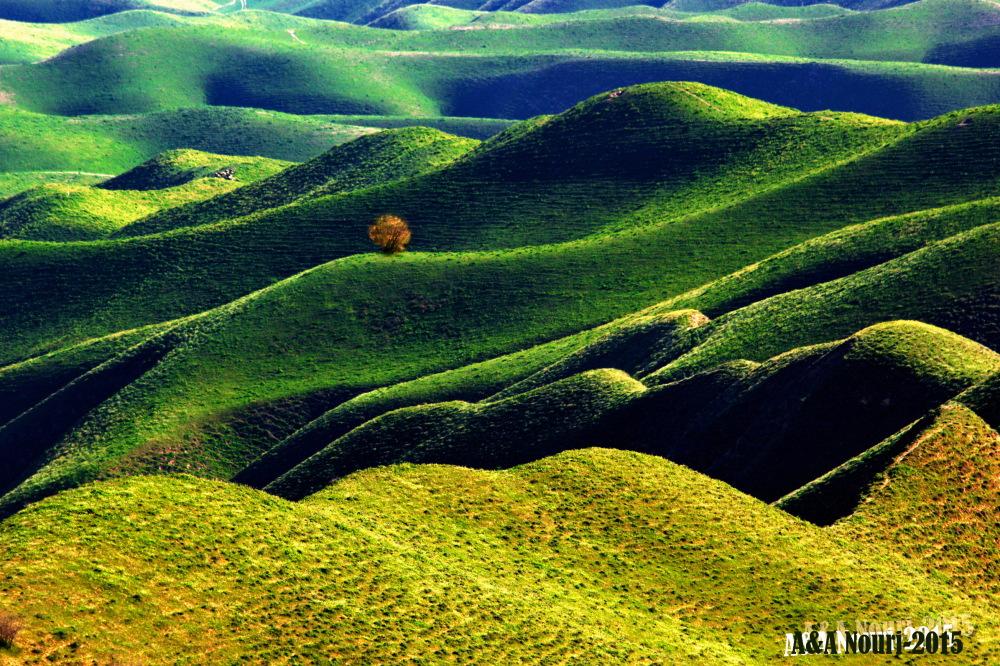 Green masterpiece