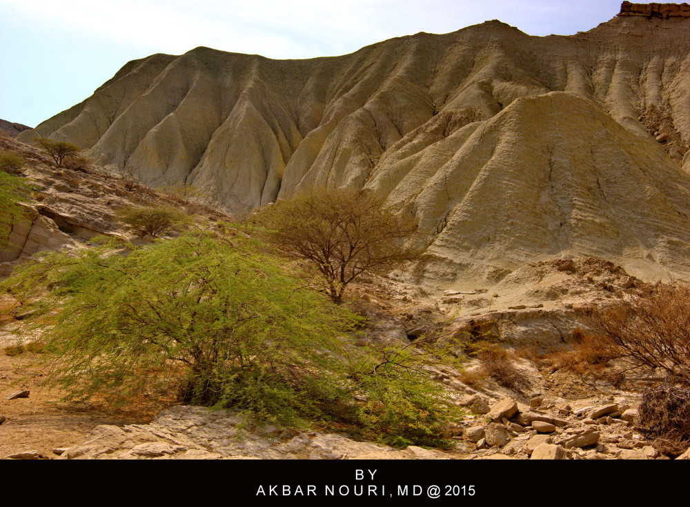 nature of Qeshm island