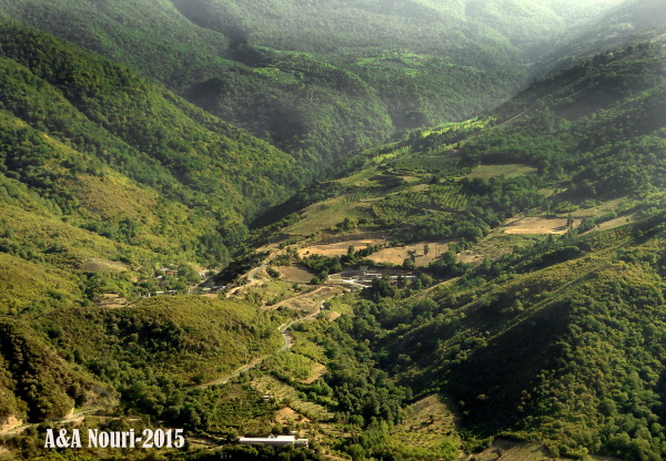 nature of Ramian