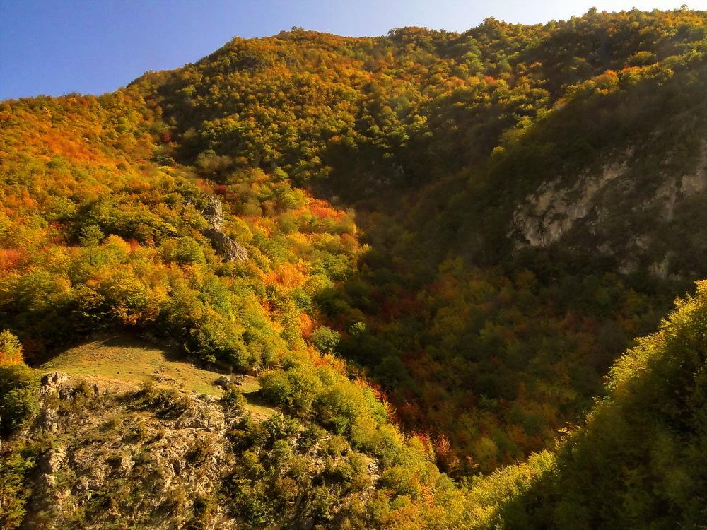 Autumn cloth