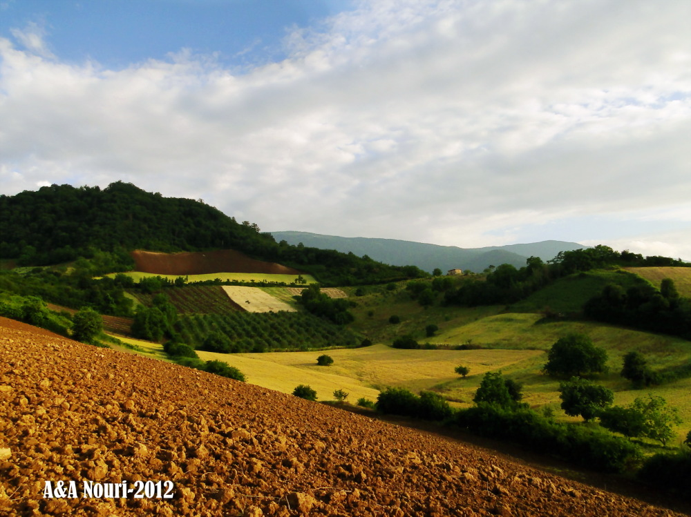 Gorgeous land
