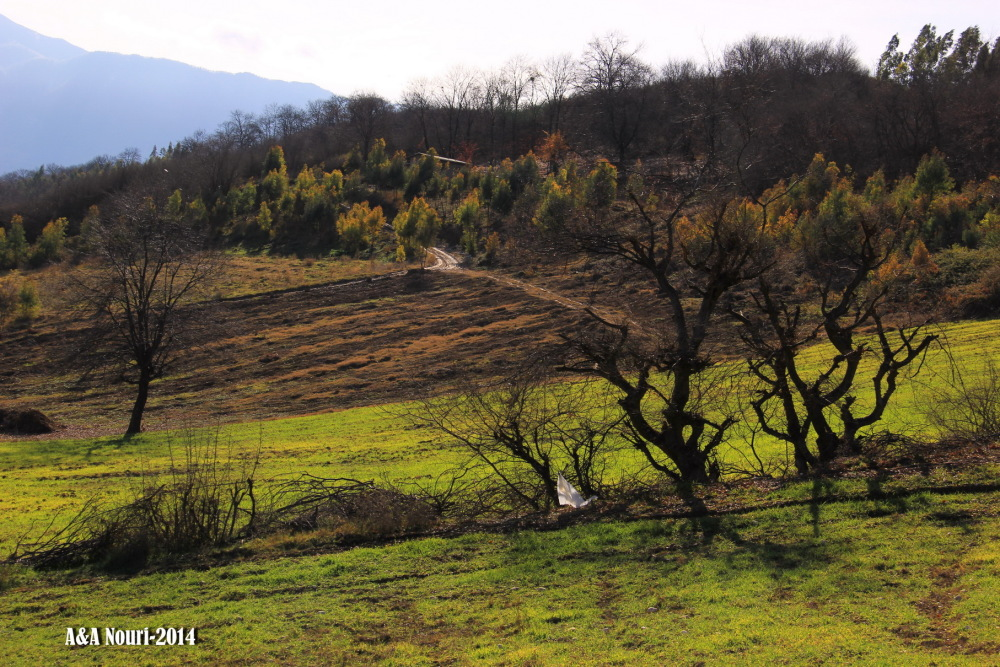 nature of around Gorgan