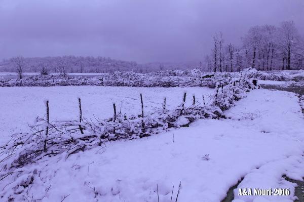deep in winter