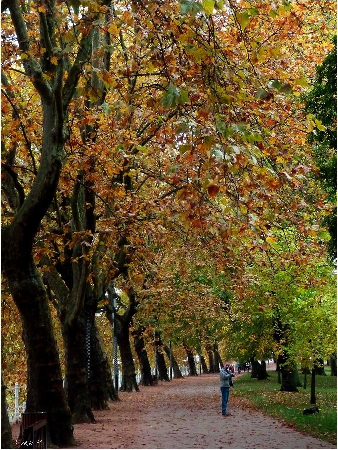 Promenade d'automne...