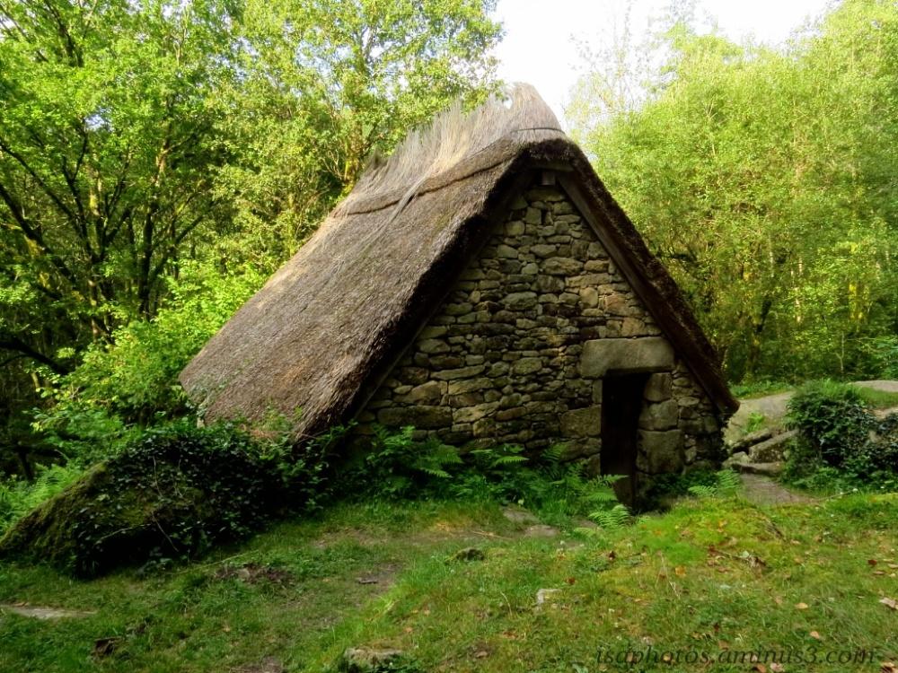 La cabane au fond de la forêt