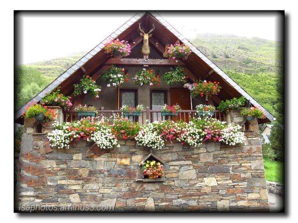 Balade dans les Pyrénées... suite...