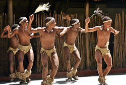 Tswana Tribal Dancing