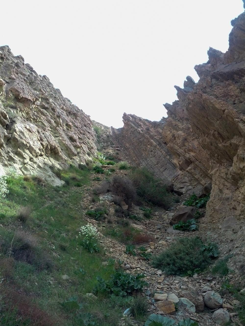 Fridays of Geology 1