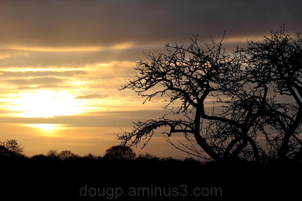 Sunset on Sedgemoor