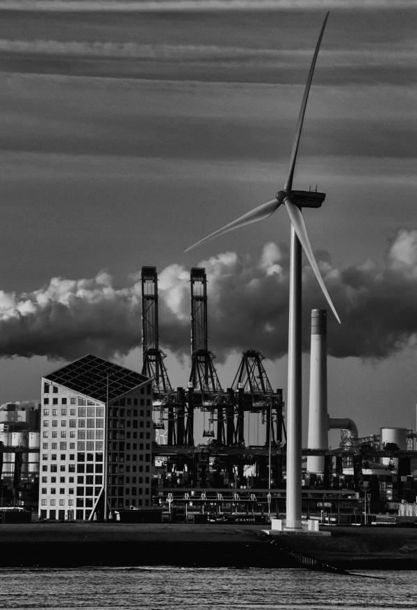Sailing into Rotterdam