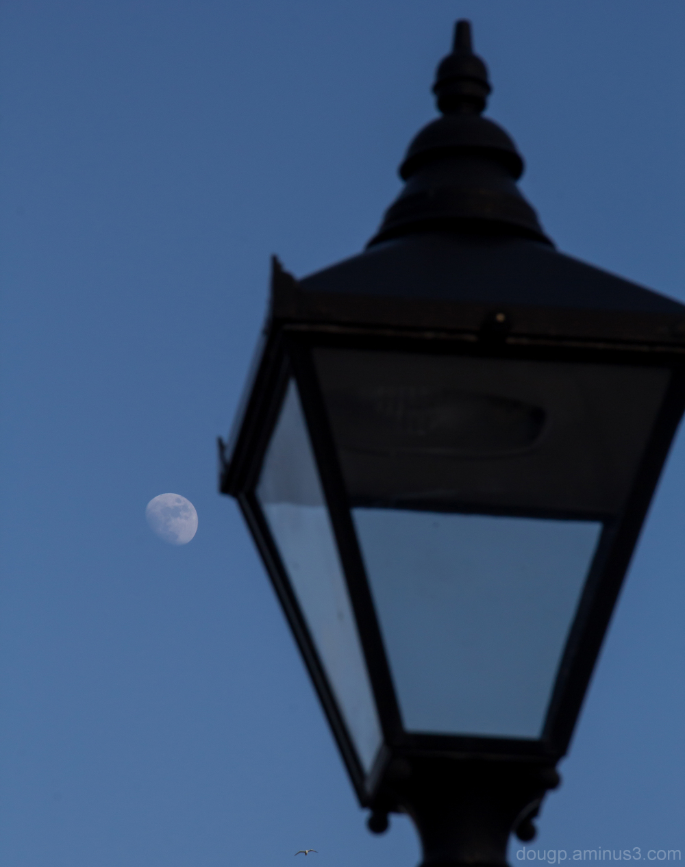 The moon and the light