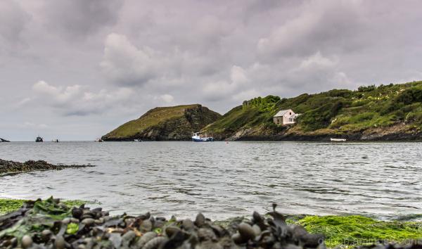 Pembroke Coast