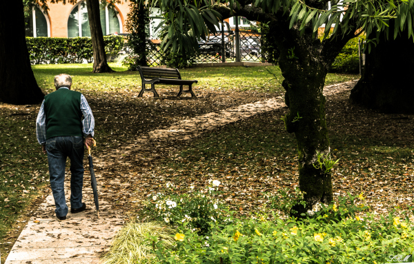 Italy+nature+old man+shadow+park+spring
