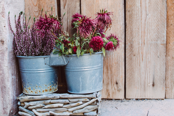 just flowerpots