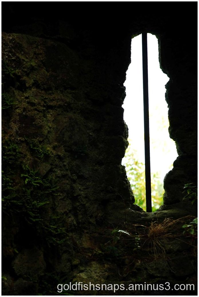 Lydford Castle window.