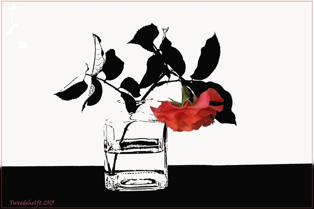roos in vaasje mem