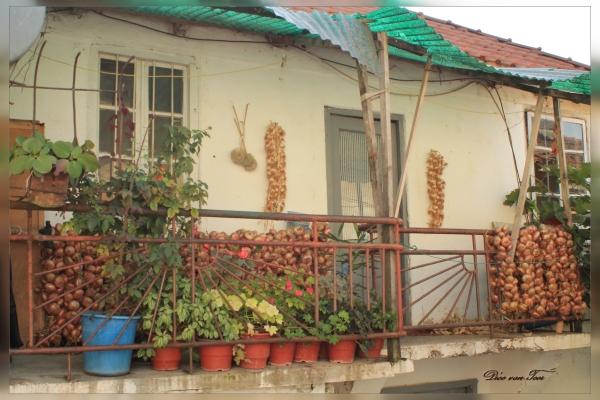 Oogst op een balkon