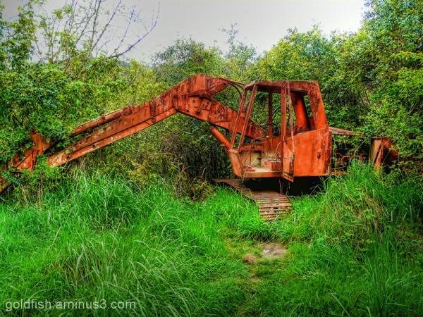 Abandoned too!