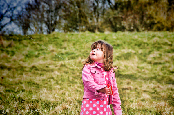 Wittenham Clumps - The Kite Flyer