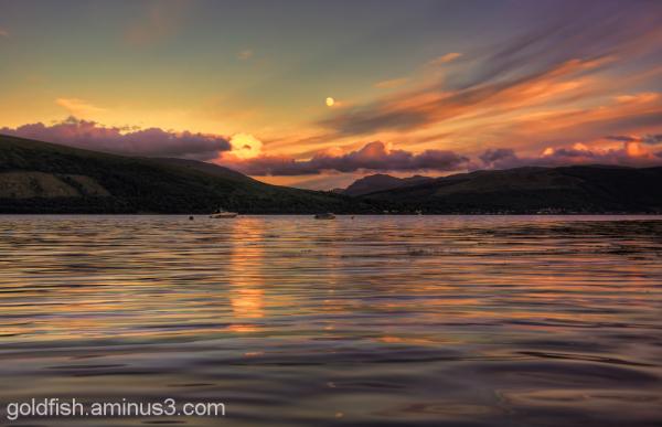Loch Fyne 4/8
