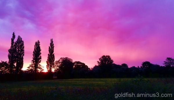 Abingdon Sunrise 1/3