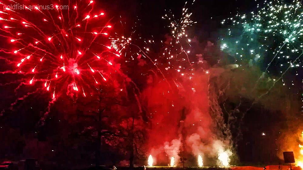 Culham Fireworks 2/11