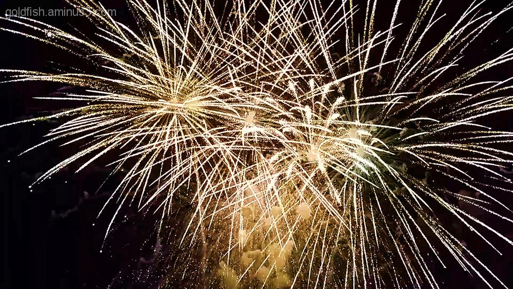 Culham Fireworks 7/11