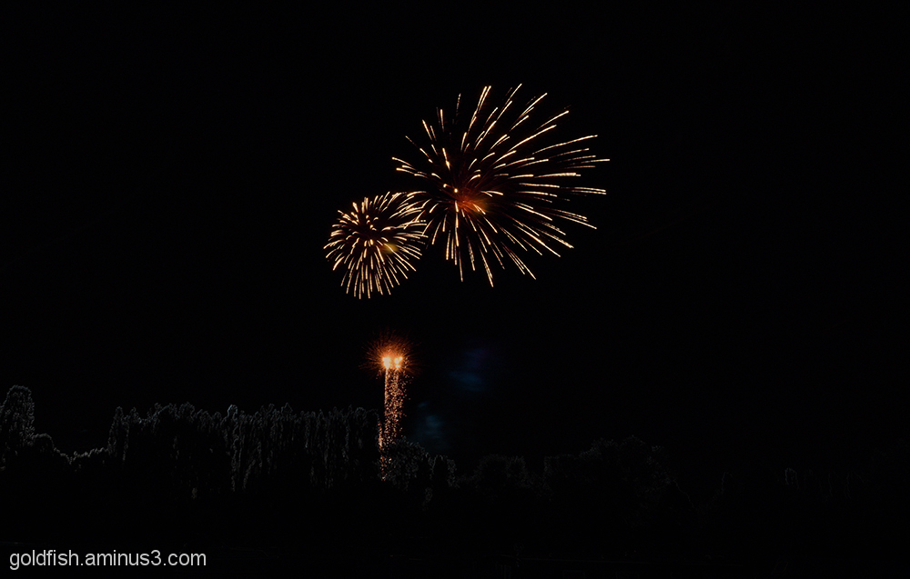 Music in the Park - Firework finale 1/6