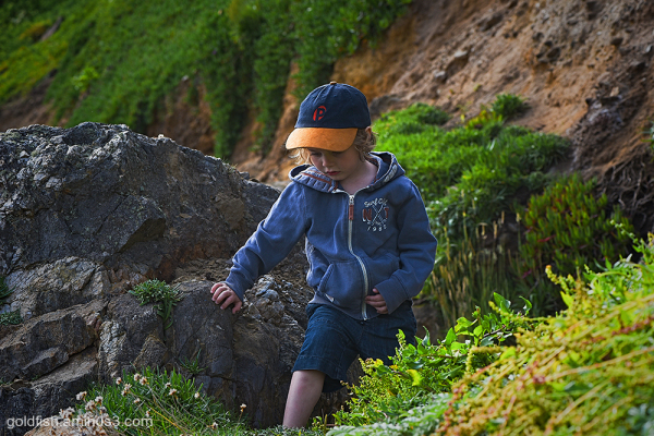 Bouldering for Beginners