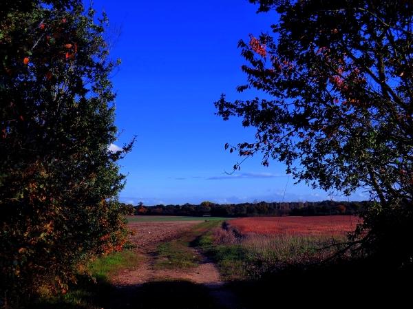 Sentier du Placineau