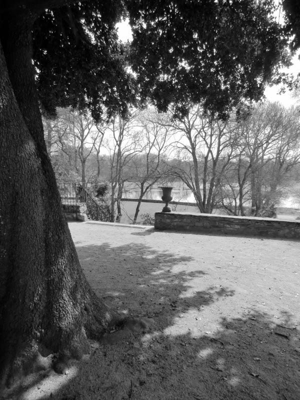 La terrasse du Chêne vert