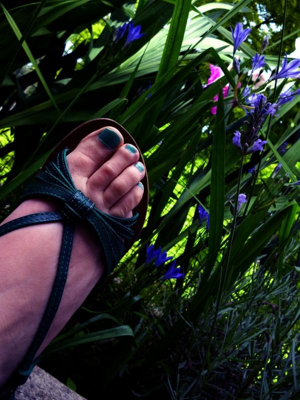 Le pied vert d'une jardinière