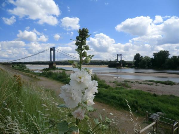 Le pont des Rosiers