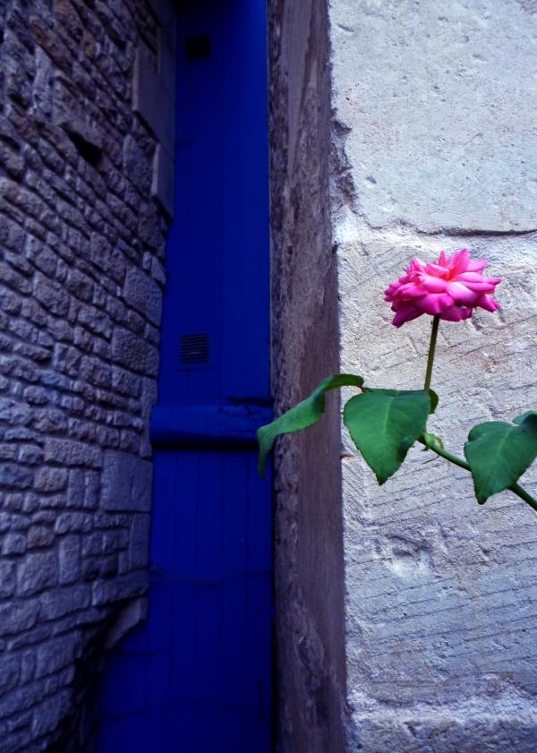 La porte bleue qui ouvre la vie en rose...