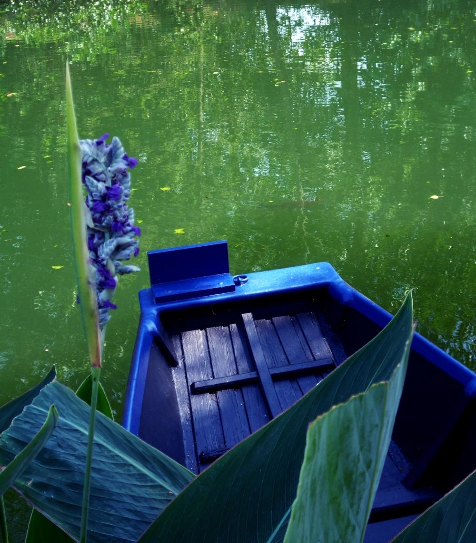 Viride à son eau,le roseau agite à la rame...