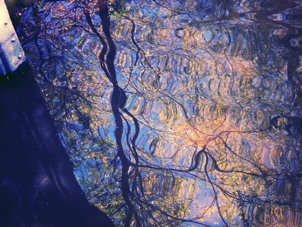 L'étendue miroitante du lac vibre en diapason...