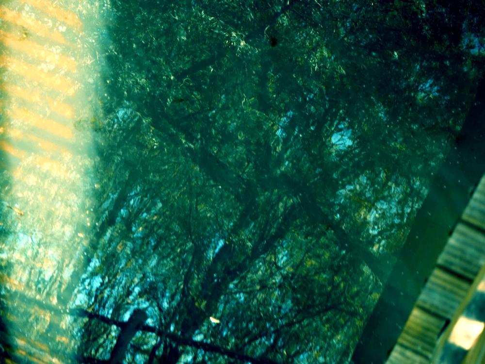 En passerelle,sous la lumière tamisée,le lac vibre