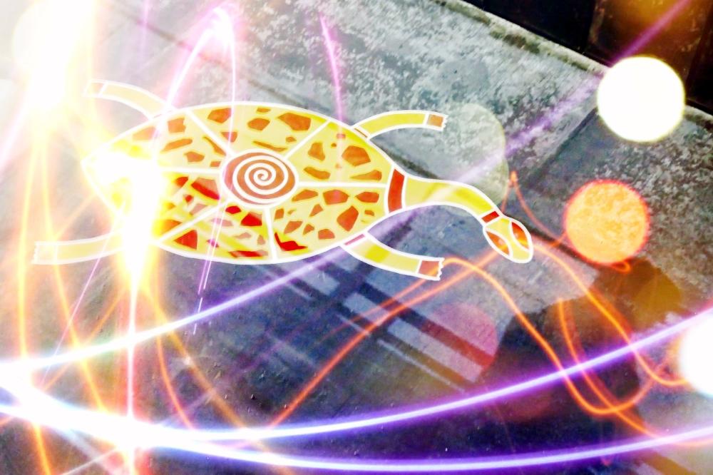 L'ombre passe à la vitesse de la tortue...