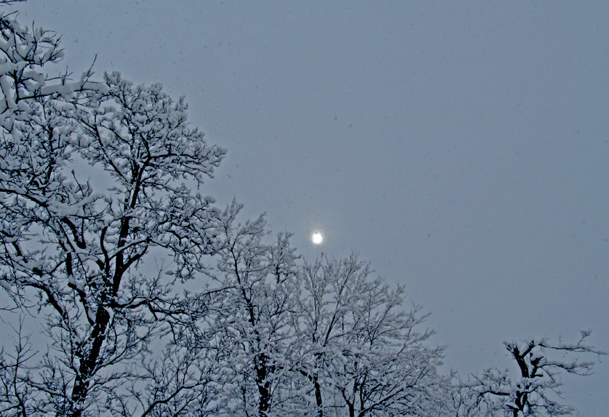 The lanterns of snowy sky