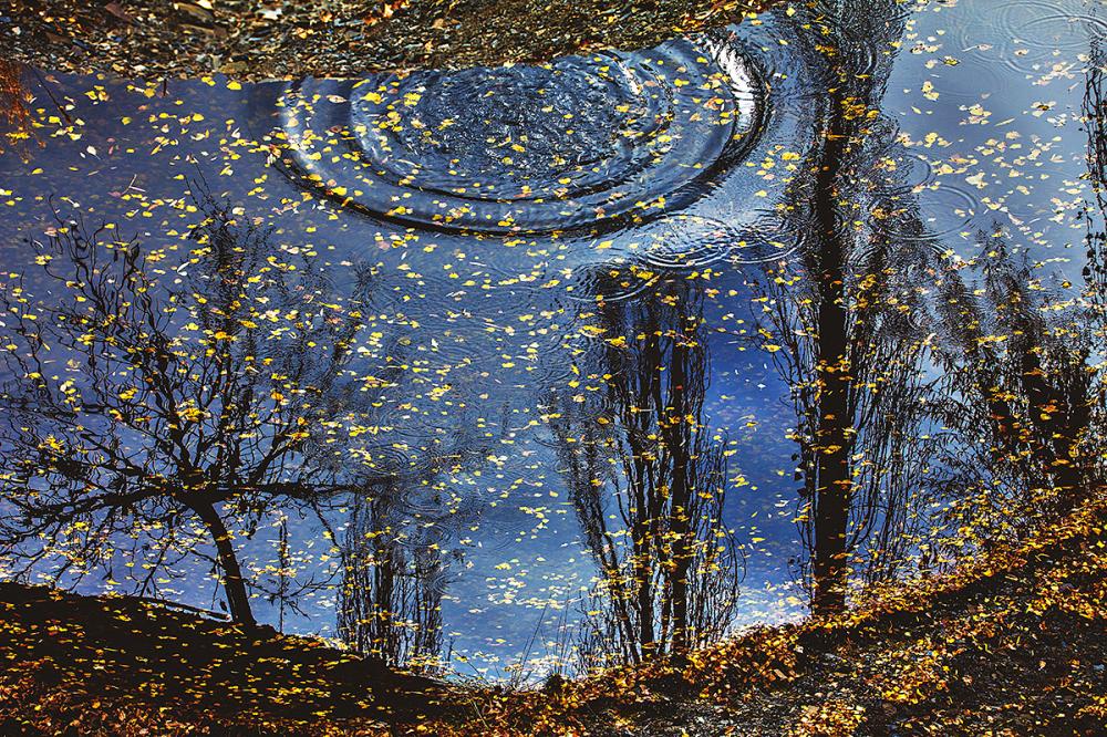 zoshk autumn reflection