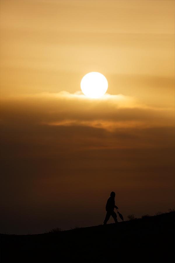 The companion of Sun