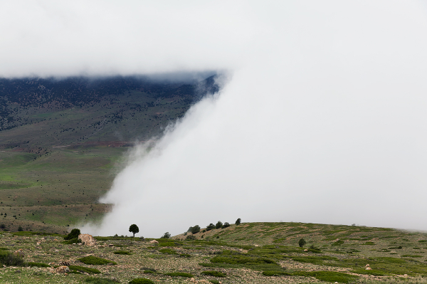 توسکستان