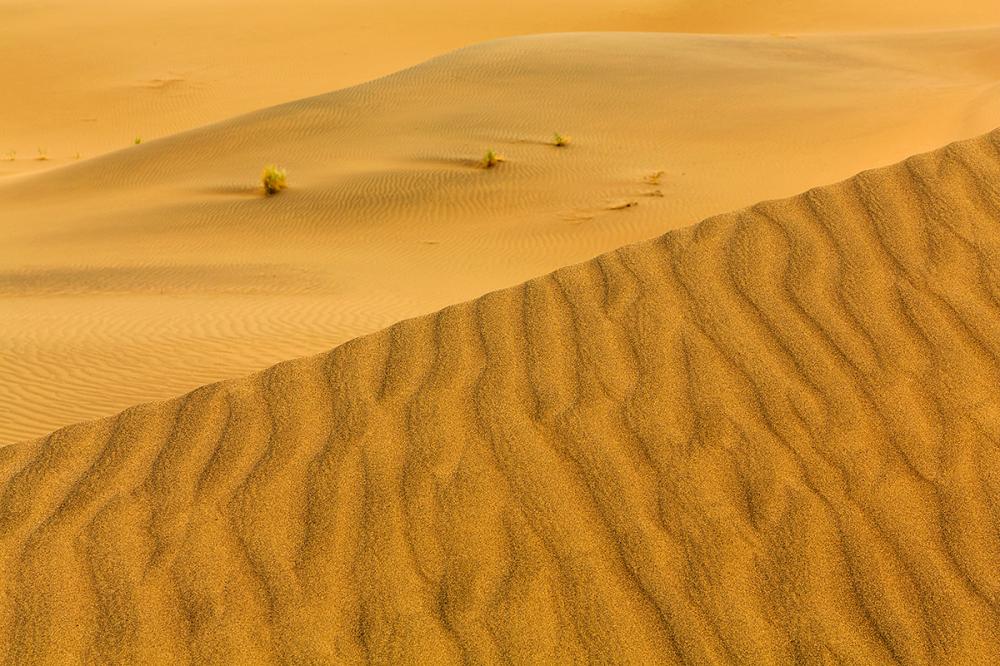 Footprint of wind
