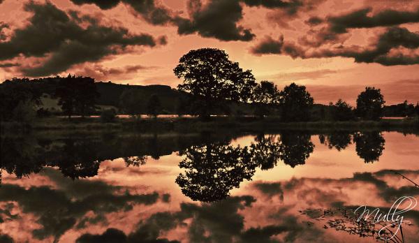 landscape reflectons