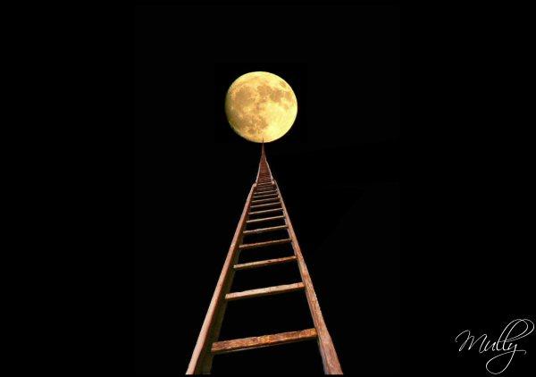 moonscape luna