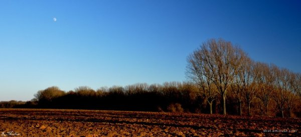 Froid campagnard - Cold countryside