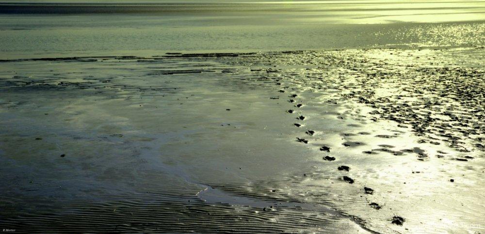 Sables mouvants - Quicksands